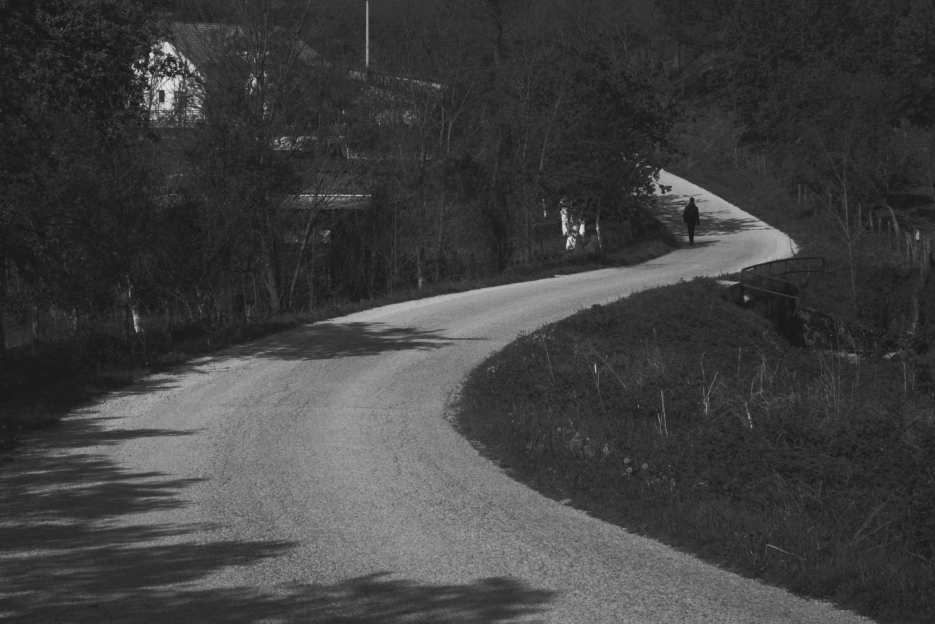 A road winds from the centre of the frame away into the distance. Trees crowd in on either side of the road. A house is visible behind the trees. There is a person on the road, just before it curves out of sight. The image is black and white.